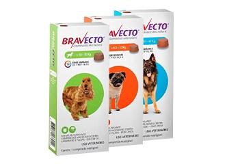 Mais Populares em Cães - Bravecto