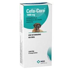 Cefa - Cure Caes E Gatos 1000g