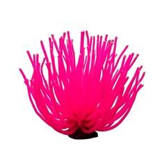 Enfeite Aquário Anêmona YS-1105XLR Pink Maxxi 14cm