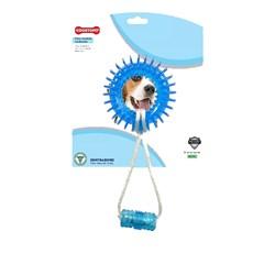 Mordedor para Cachorro até 15kg Dentalbone Argola Especial Corda Azul Carne