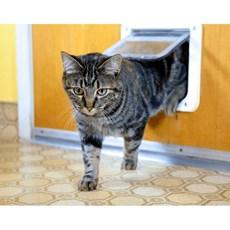 Porta para Gatos Cat Flap G com 4 Funções - Pawise